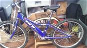 GT BIKES Mountain Bicycle FLAME